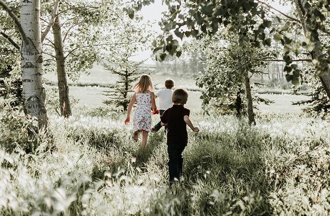 actividades verano familia